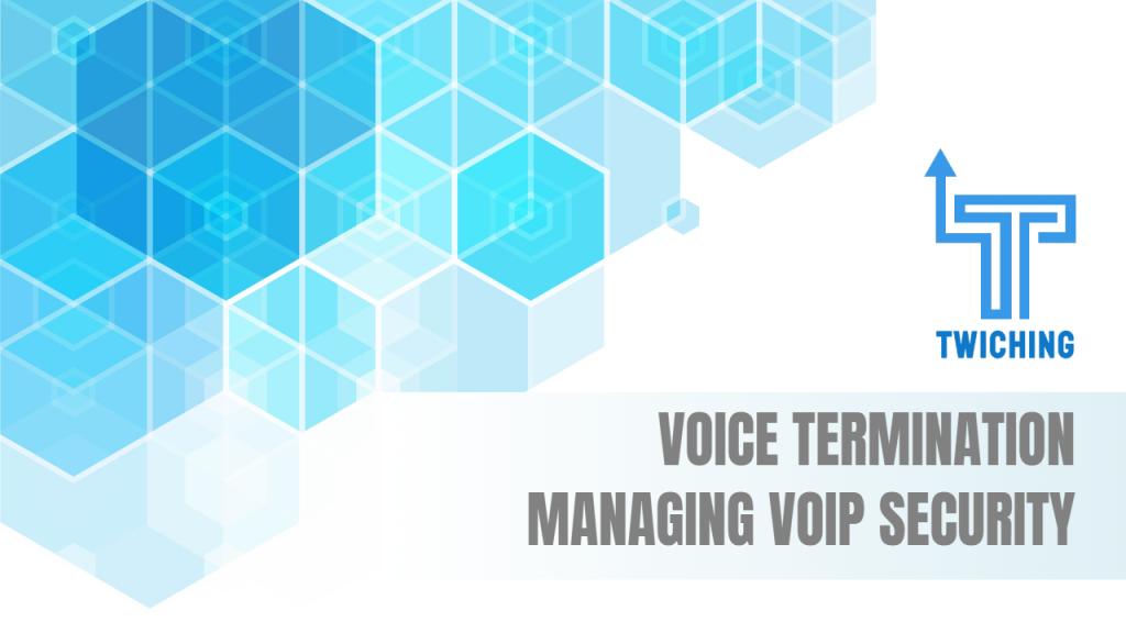 Voice Termination - wholesalevoice.com